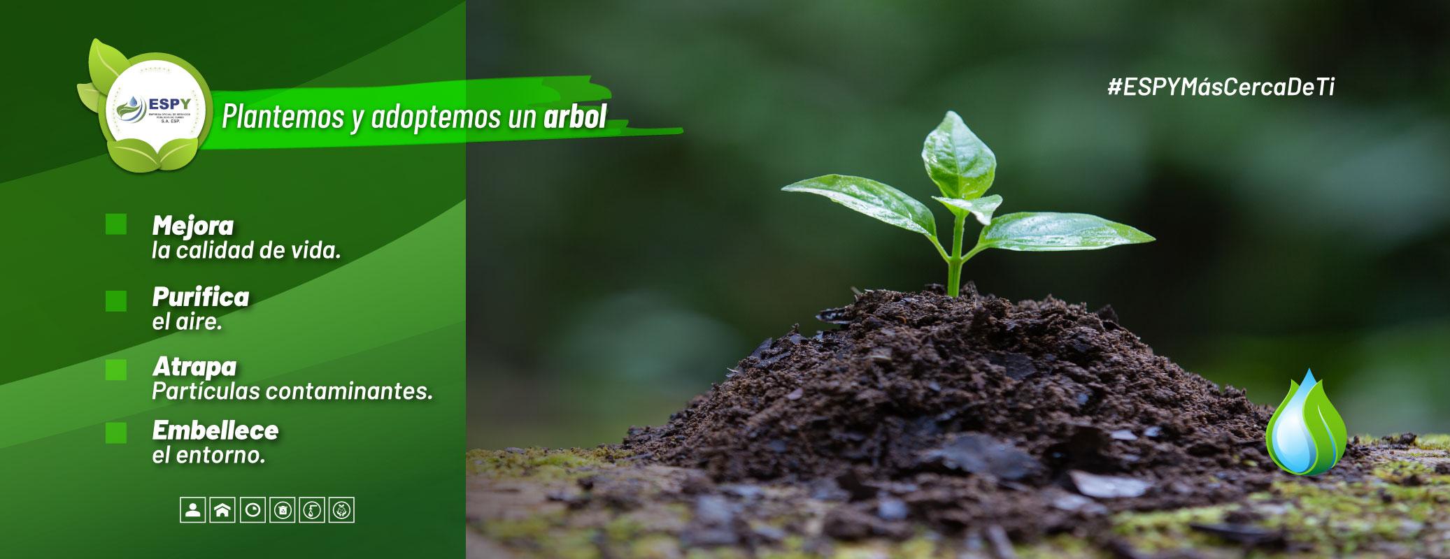 Plantemos-y-adoptemos-un-arbol-13102020